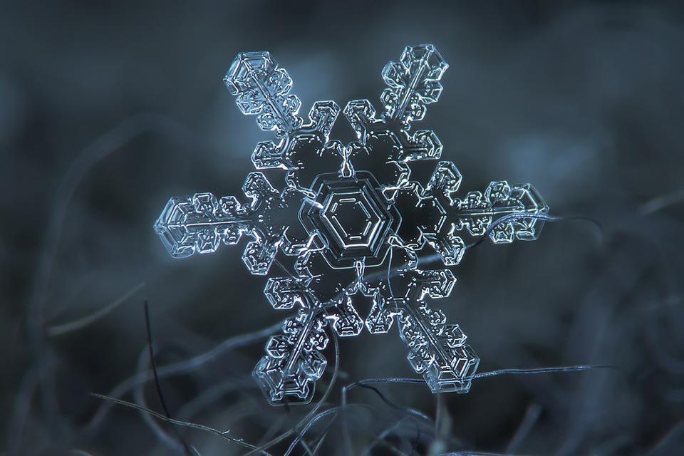 Macro Snowflakes by Alexey Kljatov
