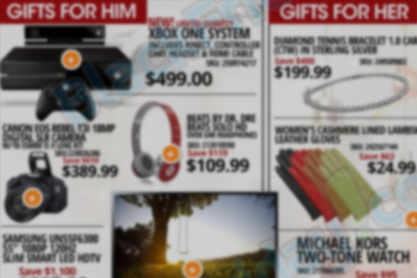 Rakuten.com Shopping Black Friday Giveaway