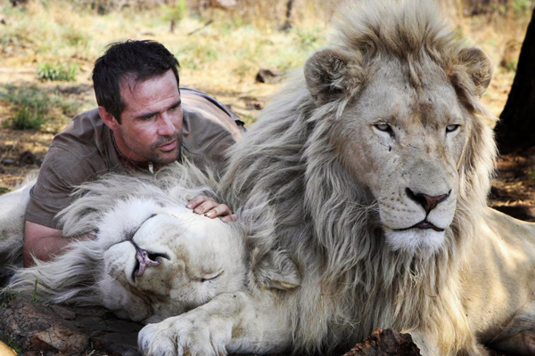 Kevin Richardson and his Lion Buddies