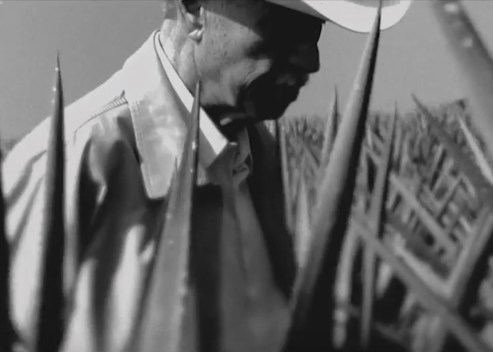 Don Julio, the man behind Don Julio Tequila