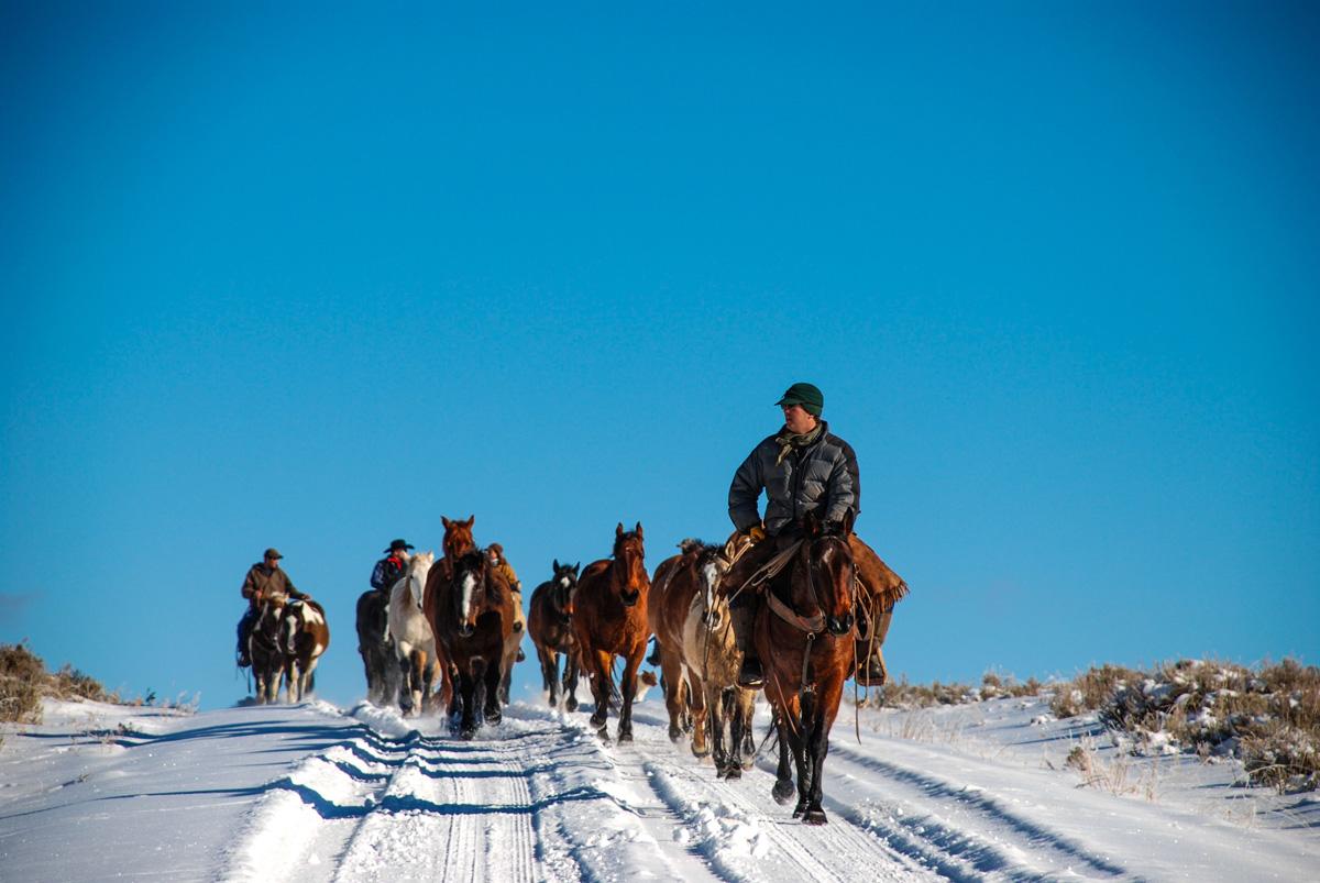 Red Reflect Ranch Horseback Riding