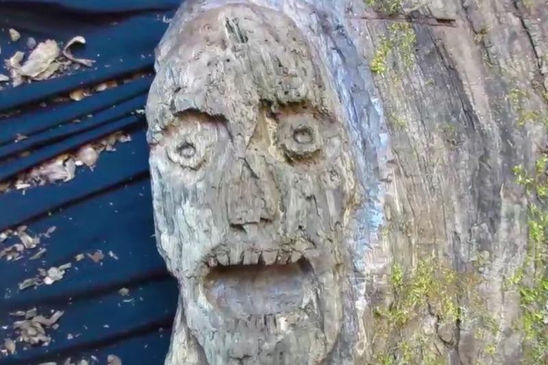 TWD Fan Art Made from Old Walnut