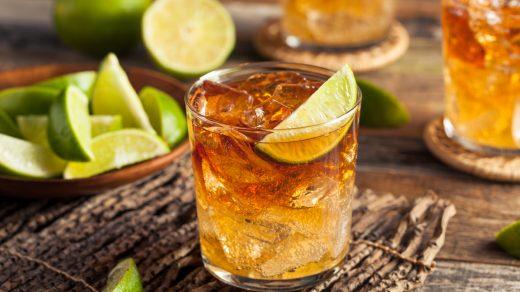 The Burro Cocktail Recipe