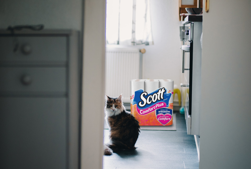 Scott ComfortPlus Toilet Paper Giveaway