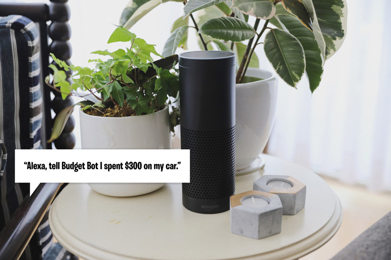 Budget Bot Alexa Skill
