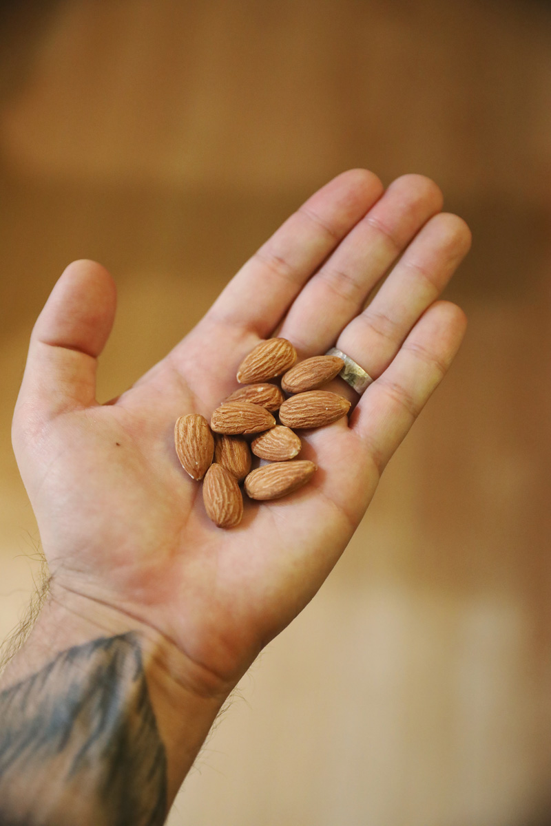Handful of almonds