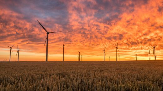 Windmills in a sunset
