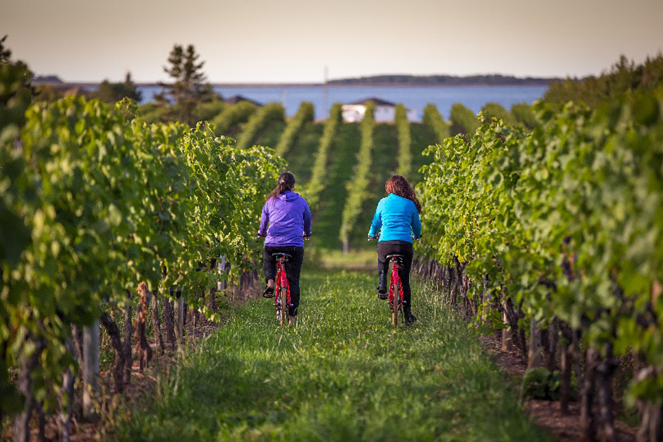 Jost Vineyards is a wine lovers dream and must-stop in Atlantic Canada