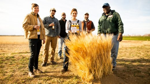U.S. farmers featured in Michelob ULTRA Pure Gold's Super Bowl commercial toast an organic beer to 6 for 6-Pack.