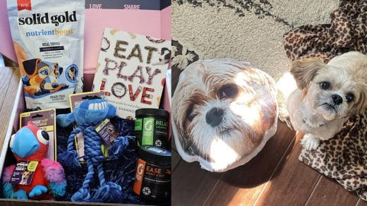 'Best for Pets' Babbleboxx Package